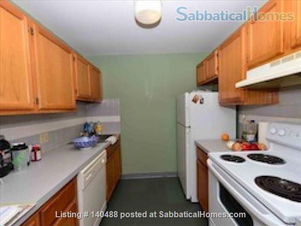 Sunny Spacious 2 BR in Boston Home Rental in Boston, Massachusetts, United States 2