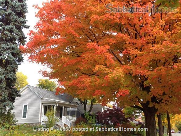 Walk to Kerrytown, Downtown and Campus! This house is a gem in one of the best neighborhoods in Ann Arbor! Home Rental in Ann Arbor, Michigan, United States 1