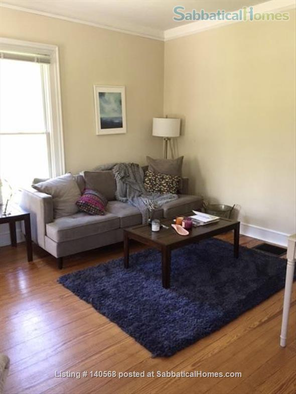 Walk to Kerrytown, Downtown and Campus! This house is a gem in one of the best neighborhoods in Ann Arbor! Home Rental in Ann Arbor, Michigan, United States 0