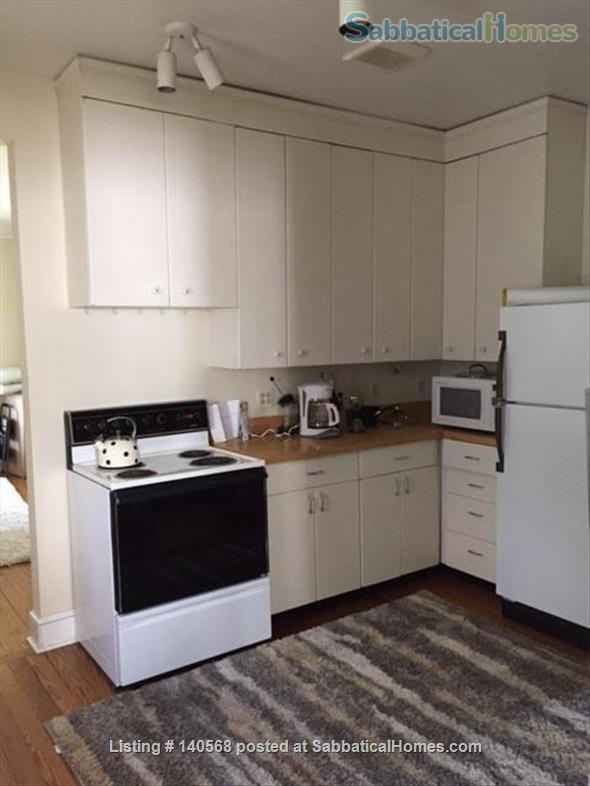 Walk to Kerrytown, Downtown and Campus! This house is a gem in one of the best neighborhoods in Ann Arbor! Home Rental in Ann Arbor, Michigan, United States 4