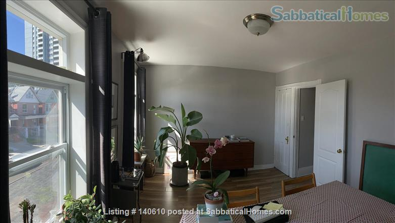 Bright, tidy one-bed room apartment in Hamilton ON  Home Exchange in Hamilton, Ontario, Canada 1