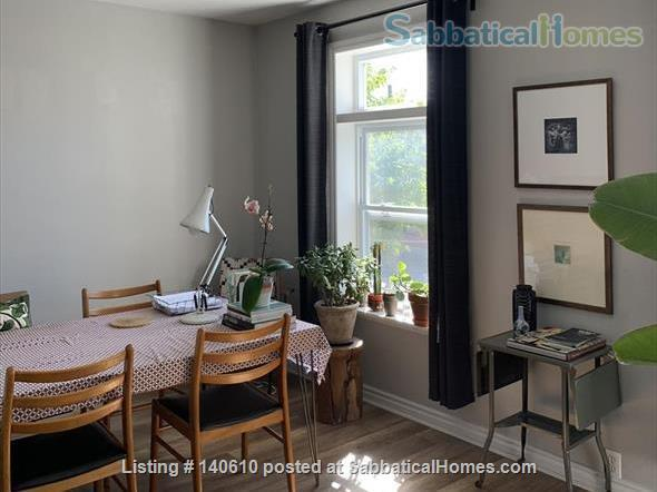 Bright, tidy one-bed room apartment in Hamilton ON  Home Exchange in Hamilton, Ontario, Canada 0