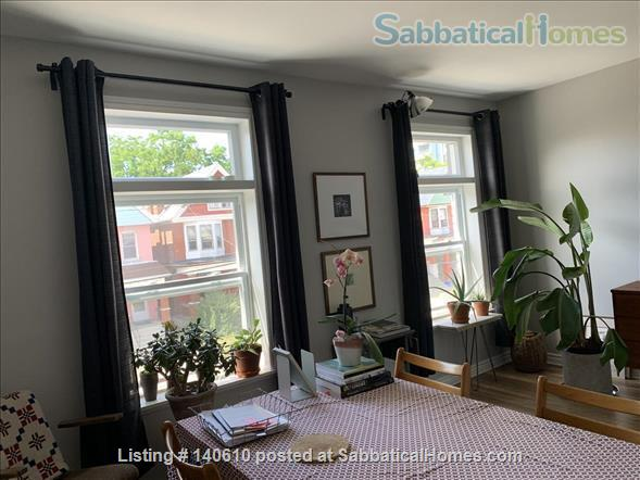 Bright, tidy one-bed room apartment in Hamilton ON  Home Exchange in Hamilton, Ontario, Canada 2