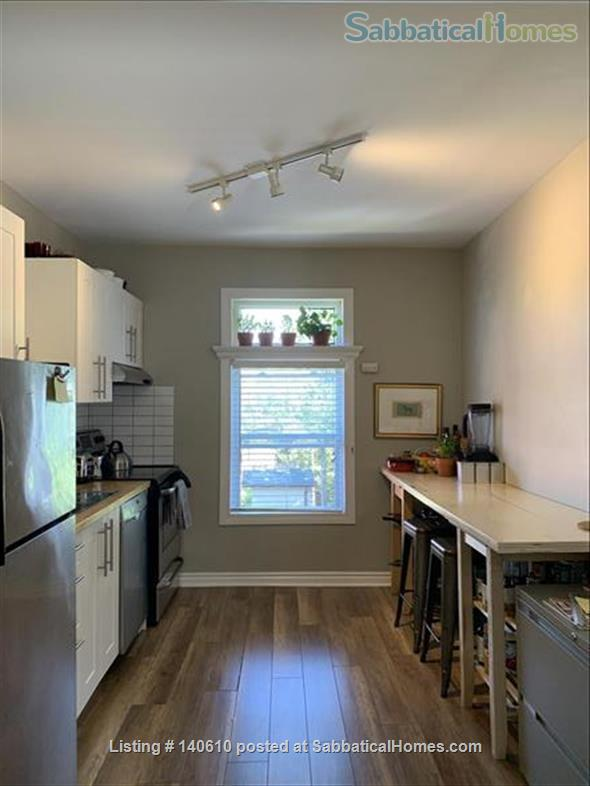 Bright, tidy one-bed room apartment in Hamilton ON  Home Exchange in Hamilton, Ontario, Canada 4