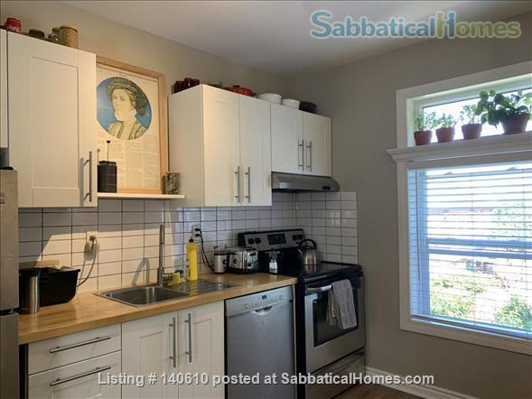 Bright, tidy one-bed room apartment in Hamilton ON  Home Exchange in Hamilton, Ontario, Canada 5