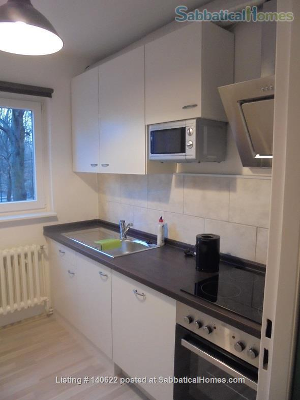 Bright 2-Room Apartment (S Schönholz) (+ Kitchen, Bathroom and Balcony) Home Rental in Berlin, Berlin, Germany 8