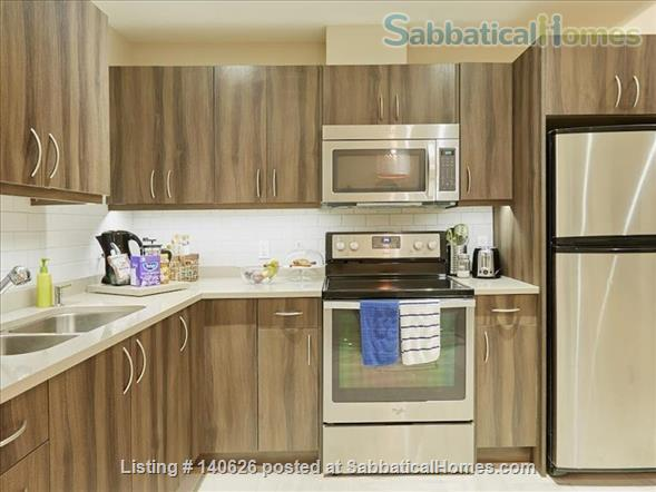 Quiet, Lower level, 1 Bedroom Flat  at Christie Park and subway Home Rental in Toronto, Ontario, Canada 3