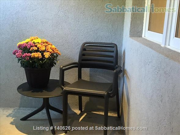 Quiet, Lower level, 1 Bedroom Flat  at Christie Park and subway Home Rental in Toronto, Ontario, Canada 7