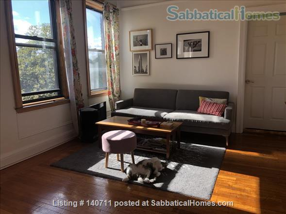 Large apartment, furnished, short or long term (up to a year) Home Rental in New York, New York, United States 0
