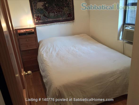 Nice and Cool One Bedroom in Lower East Side, Manhattan, NY Home Rental in New York, New York, United States 3