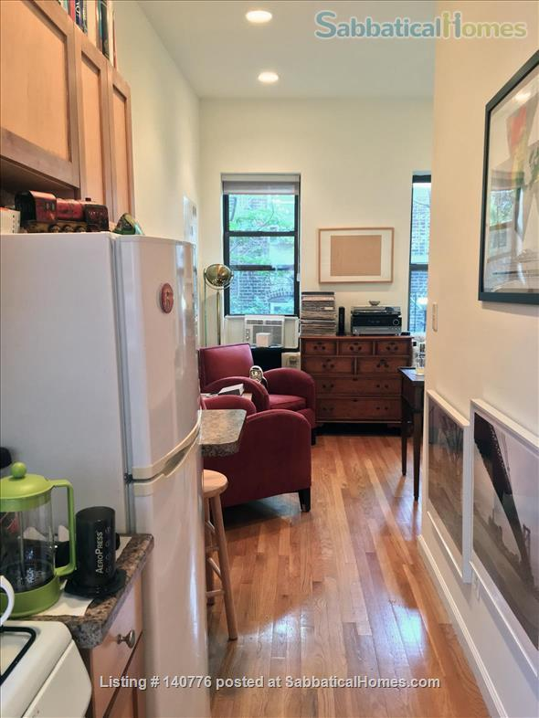 Nice and Cool One Bedroom in Lower East Side, Manhattan, NY Home Rental in New York, New York, United States 4