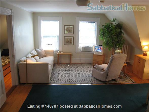 WALK TO HARVARD - One Bedroom with Study, in-unit laundry, heat & all utils Home Rental in Cambridge 1