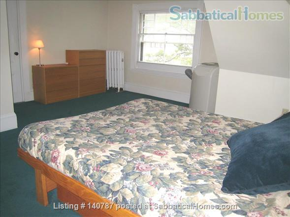 WALK TO HARVARD - One Bedroom with Study, in-unit laundry, heat & all utils Home Rental in Cambridge 4