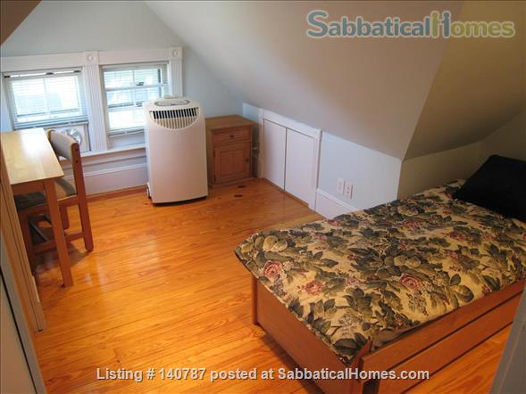 WALK TO HARVARD - One Bedroom with Study, in-unit laundry, heat & all utils Home Rental in Cambridge 5