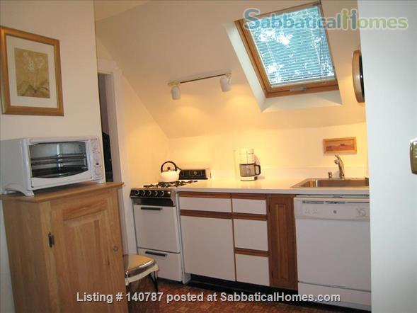 WALK TO HARVARD - One Bedroom with Study, in-unit laundry, heat & all utils Home Rental in Cambridge 7