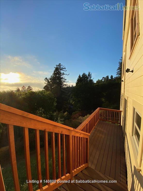 beautiful brand new Berkeley apartment  Home Rental in Berkeley, California, United States 1