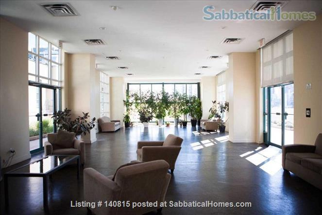 Gorgeous Sun-filled 1BR Hard Loft in the Heart of Downtown Toronto  Home Rental in Toronto, Ontario, Canada 5