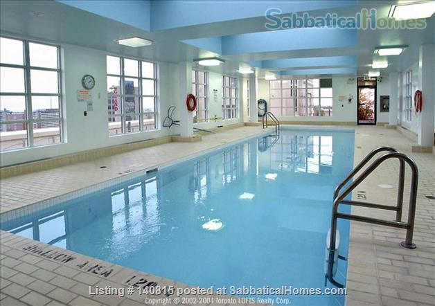 Gorgeous Sun-filled 1BR Hard Loft in the Heart of Downtown Toronto  Home Rental in Toronto, Ontario, Canada 6