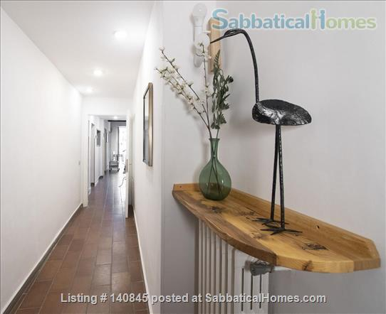 Bright and spacious apartment in Santa Croce Home Rental in Florence, Toscana, Italy 8