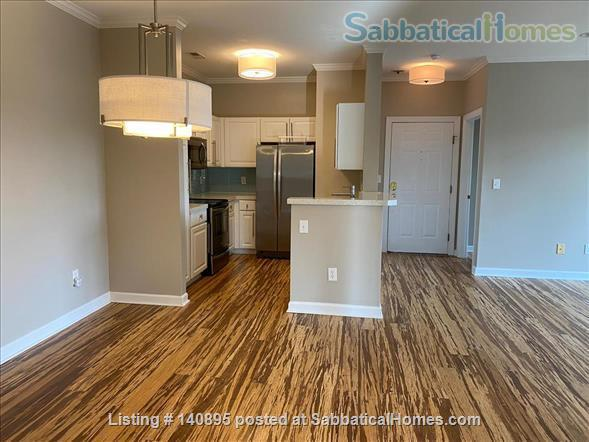 Condo in Southern Village, Chapel Hill Home Rental in Chapel Hill, North Carolina, United States 4