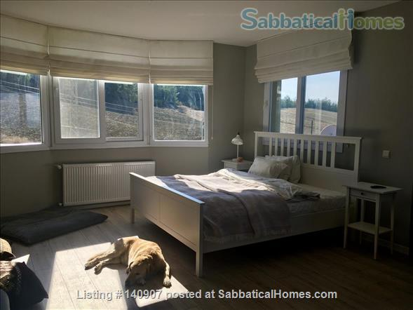 New family home in nature, 7 minutes to university Home Rental in Sariçam, Adana, Turkey 8