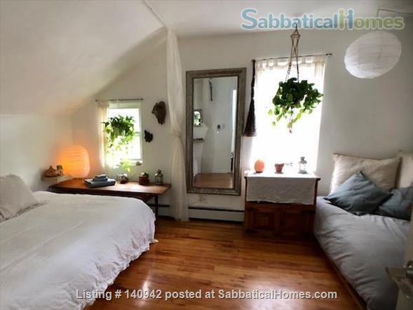 Elegant Furnished City House w/ Private Parking & Backyard Home Rental in Prospect Lefferts Gardens, New York, United States 6