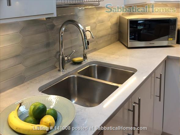 Contemporary, spacious, bright, quiet apartment in lively Commercial Dr Neighbourhood Home Rental in Vancouver, British Columbia, Canada 6