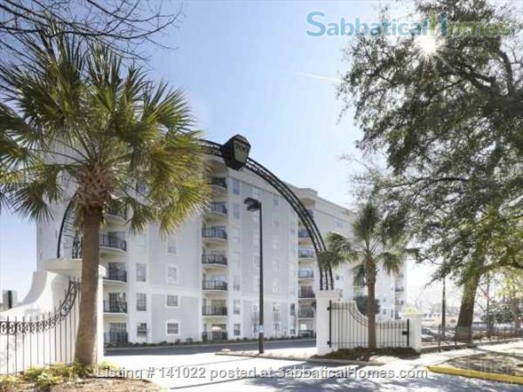 luxury 2/2BR top-floor, furnished, modern, sunsets, ideal for USC or corporate stays! Home Rental in Columbia, South Carolina, United States 1