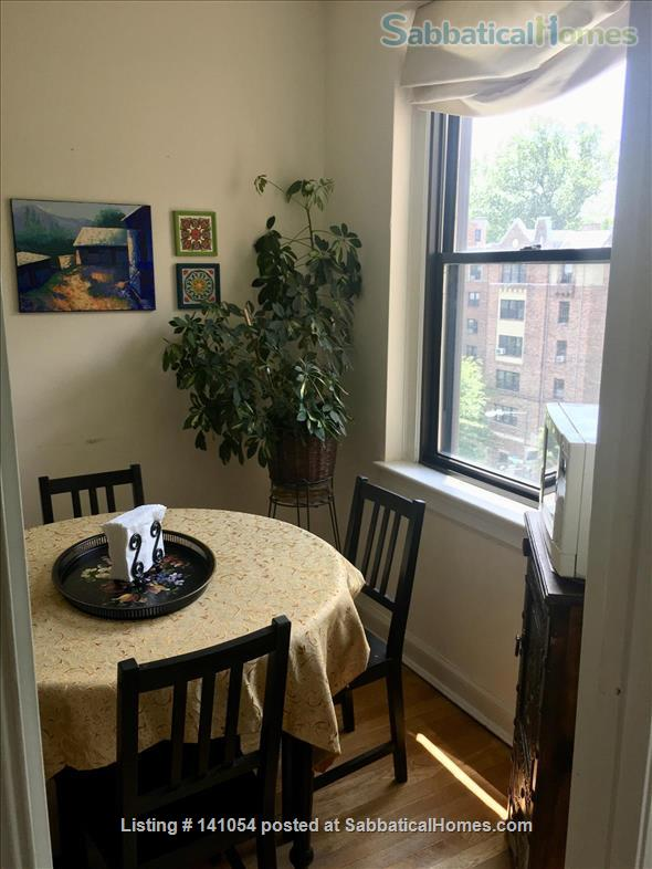 Charming, spacious, light filled 1 BR+large den condo - furnished, partially furnished or unfurnished  condo Cleveland Park/Van Ness Home Rental in Washington, District of Columbia, United States 5