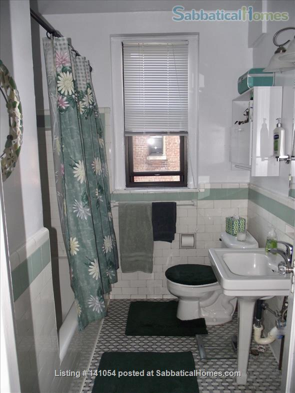 Charming, spacious, light filled 1 BR+large den condo - furnished, partially furnished or unfurnished  condo Cleveland Park/Van Ness Home Rental in Washington, District of Columbia, United States 7
