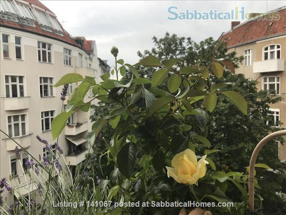 Two lovely rooms  for 2 x 2 persons in a shared apartment with study in Berlin Schöneberg Home Rental in Berlin, Berlin, Germany 8