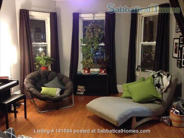 1 Bedroom Apartment near Central Sq - close to Harvard and MIT Home Rental in Cambridge, Massachusetts, United States 1