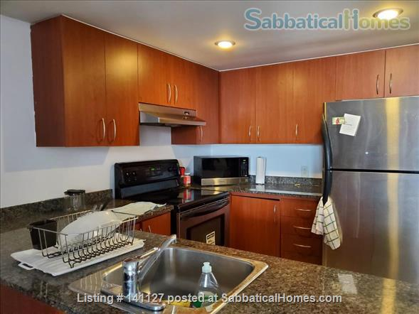 Downtown Montreal condo Home Rental in Montreal, Quebec, Canada 5