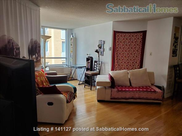 Downtown Montreal condo Home Rental in Montreal, Quebec, Canada 7