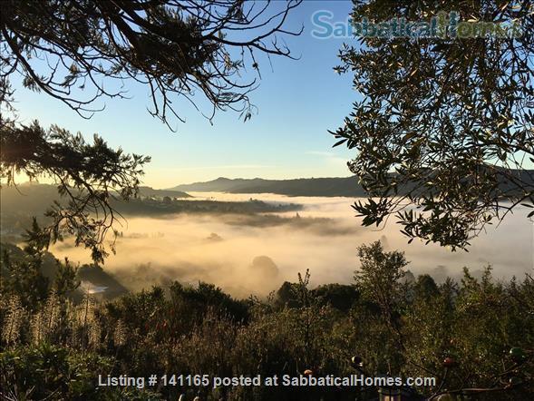 Robinson Caruso like hilltop magical retreat. Home Rental in El Sobrante, California, United States 1