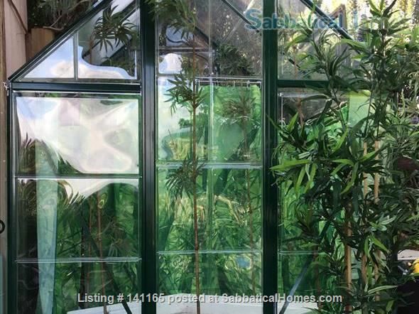 Robinson Caruso like hilltop magical retreat. Home Rental in El Sobrante, California, United States 3