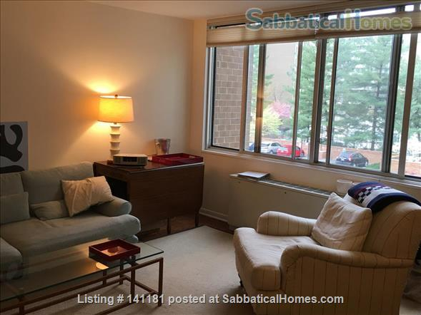 Large Furnished 1BR condo w/sunshine, parking on Red Line near AU Home Rental in Washington, District of Columbia, United States 2