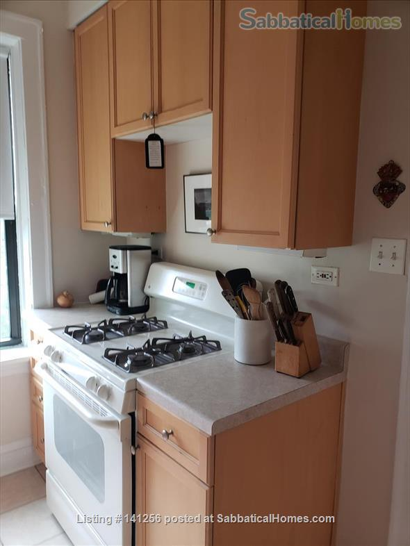 One bedroom apartment to sublease Home Rental in Evanston, Illinois, United States 4