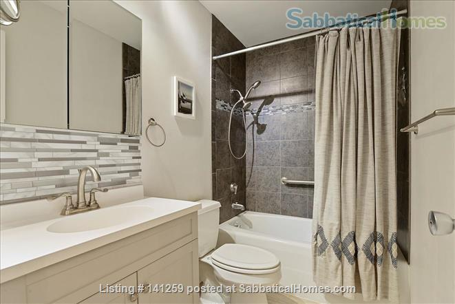 Fully Renovated 1BR in Gateway District, steps from Hennepin Ave Bridge Home Rental in Minneapolis, Minnesota, United States 6