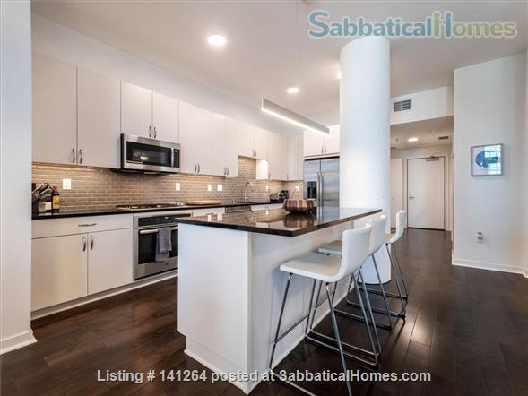 2BR+Den Condo with amazing finishes and view close to U of M: West Bank Home Rental in Minneapolis, Minnesota, United States 0
