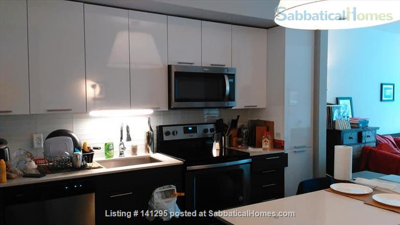 Beautiful one bedroom right on Ithaca Commons Home Rental in Ithaca, New York, United States 1