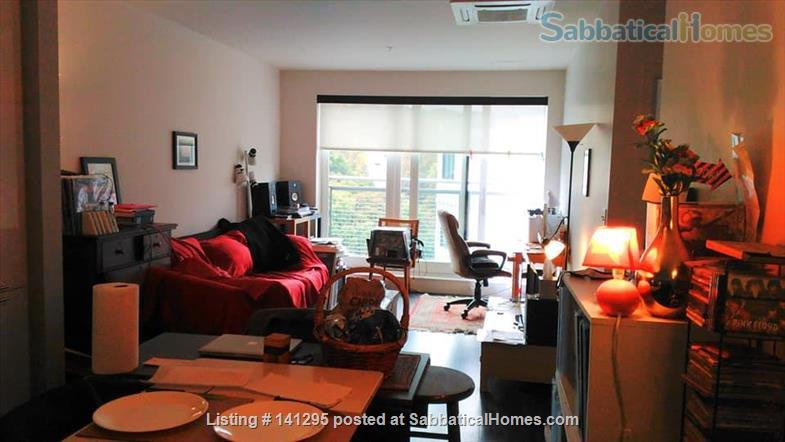 Beautiful one bedroom right on Ithaca Commons Home Rental in Ithaca, New York, United States 0