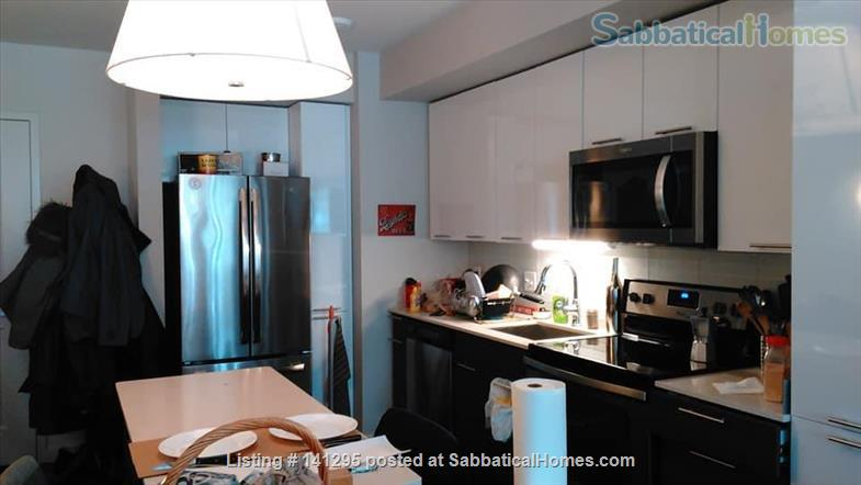 Beautiful one bedroom right on Ithaca Commons Home Rental in Ithaca, New York, United States 2