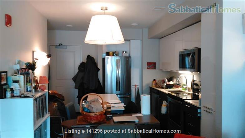 Beautiful one bedroom right on Ithaca Commons Home Rental in Ithaca, New York, United States 3