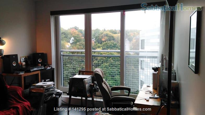 Beautiful one bedroom right on Ithaca Commons Home Rental in Ithaca, New York, United States 4