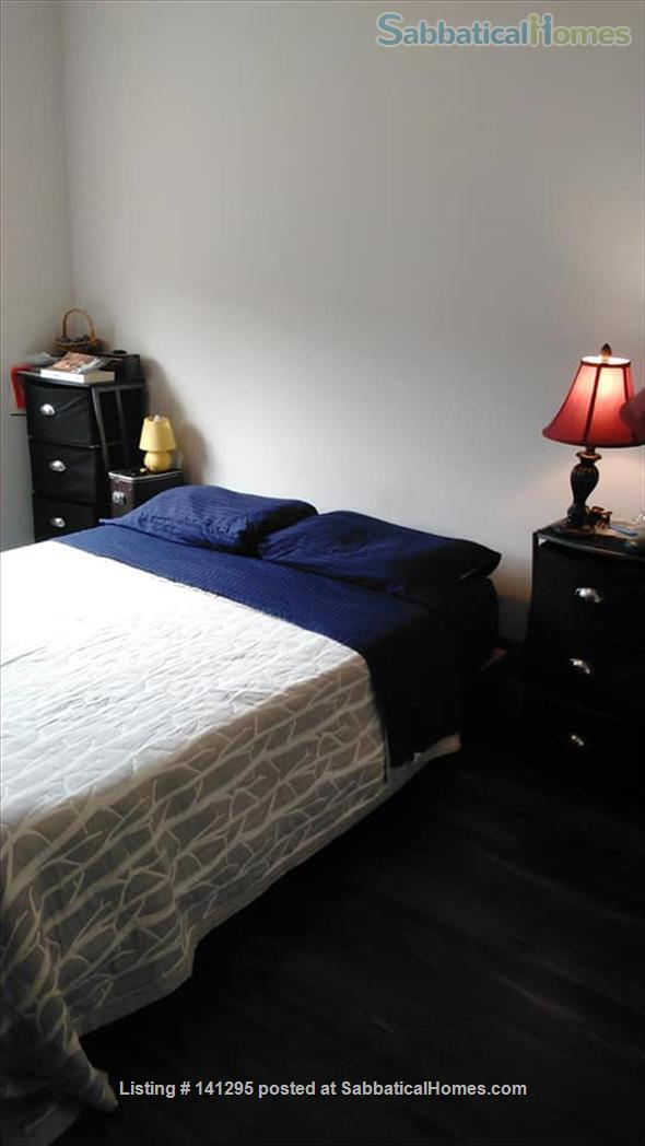Beautiful one bedroom right on Ithaca Commons Home Rental in Ithaca, New York, United States 5