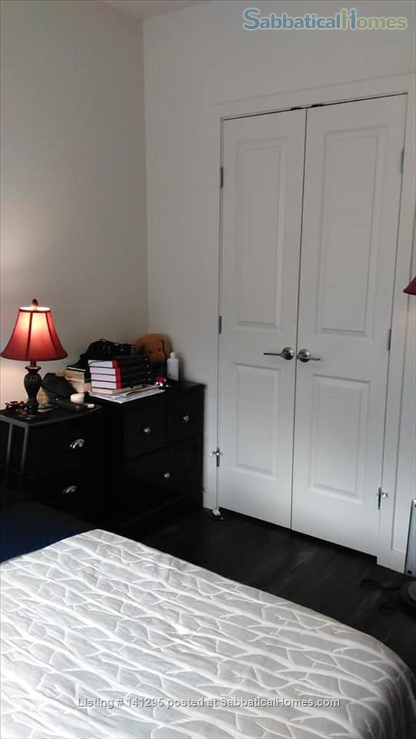 Beautiful one bedroom right on Ithaca Commons Home Rental in Ithaca, New York, United States 6