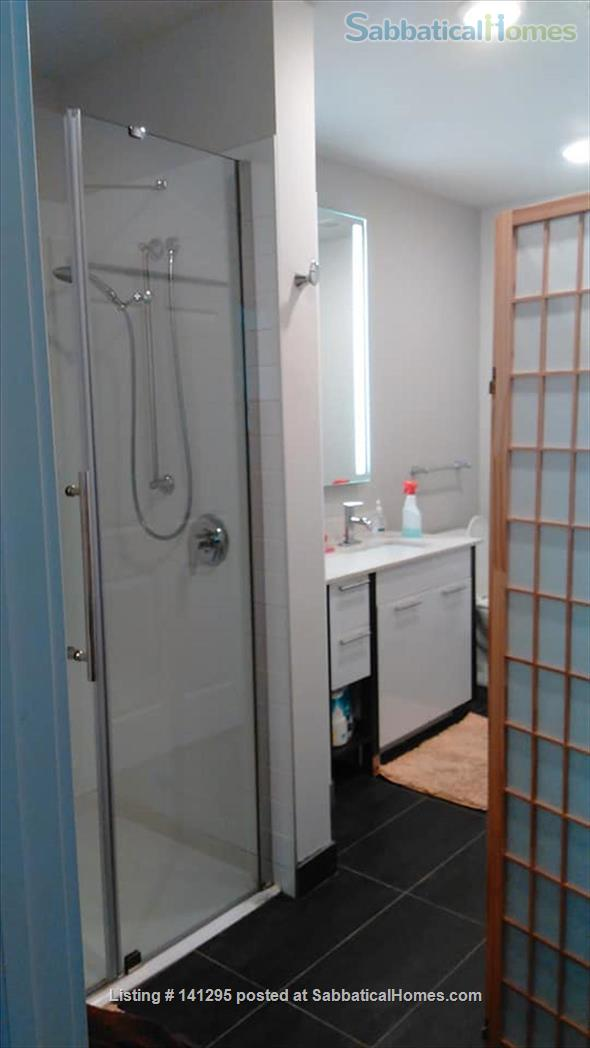 Beautiful one bedroom right on Ithaca Commons Home Rental in Ithaca, New York, United States 7