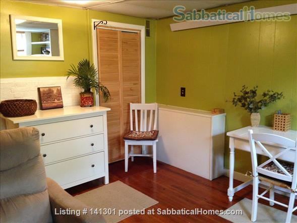 Fully Furnished Garden-Level Apartment Available for Short-Term Rentals Home Rental in Cambridge, Massachusetts, United States 1