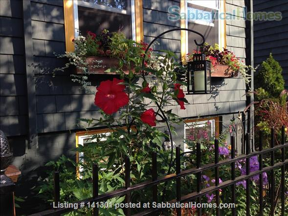 Fully Furnished Garden-Level Apartment Available for Short-Term Rentals Home Rental in Cambridge, Massachusetts, United States 7